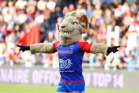 Buky, la mascotte de Grenoble