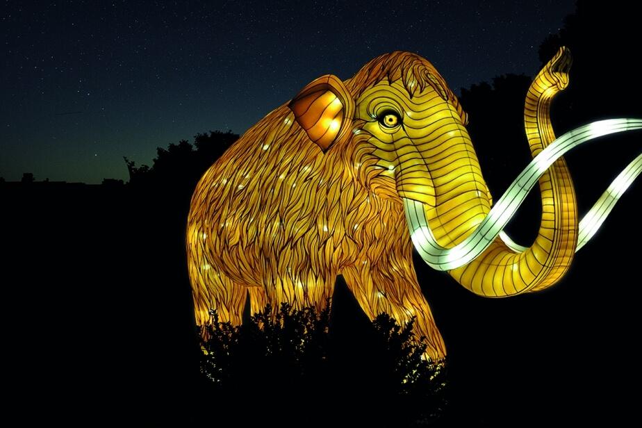 Espèces en voie d'illumination : mamouth au Jardin des plantes (crédit China light festival)