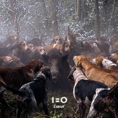 I=O - coeur