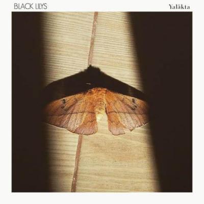 Black Lilys - Yaläkta