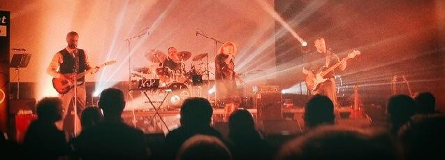 Elephant Memories prépare son 1er album
