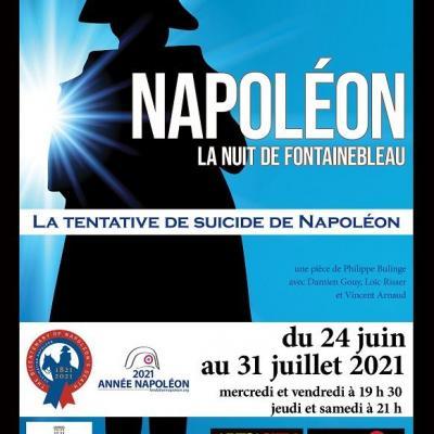Napoléon La nuit de Fontainebleau