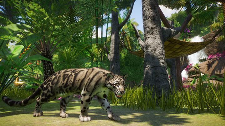 Planet Zoo - Panthère Nébuleuse