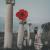 Rose Kid : l'EP Nos Années Tendres